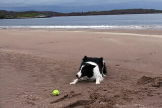Holiday Cottages West Coast of Scotland